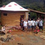 Cogumelos Camping