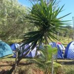 Camping Jatobá