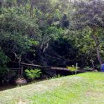 Pousada Camping Prainha