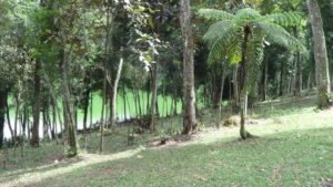 Camping Riacho Grande