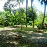 Camping e Restaurante Tropical