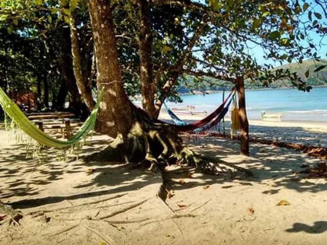 Camping Amora