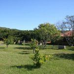 Camping Praia das Pombas (1)