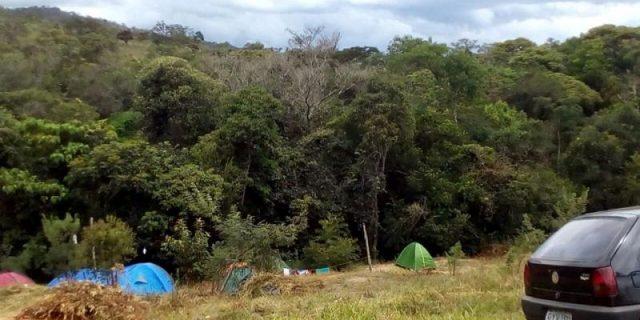 Cogumelos Camping Rock