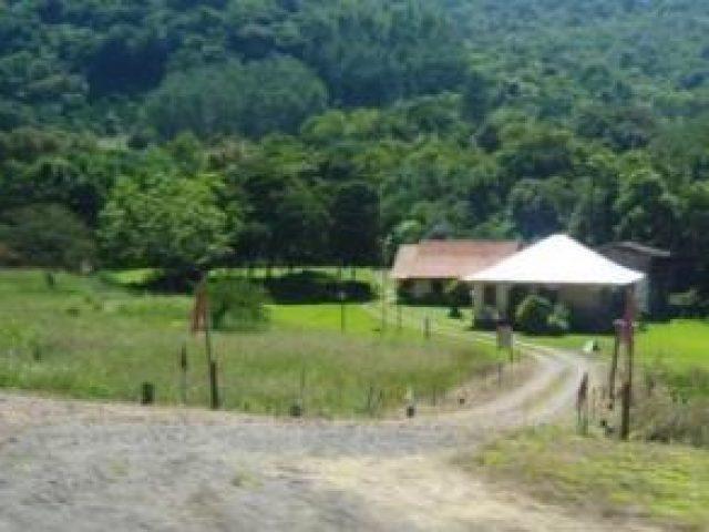 Camping Stringini