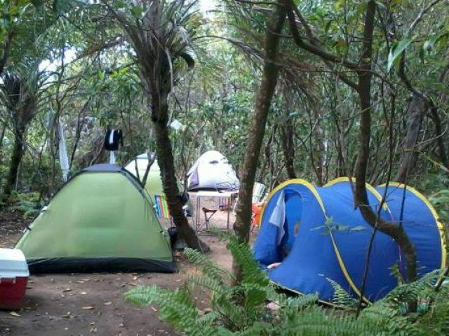 Camping do Bacurau